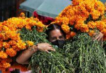 Pie de foto,La flor de cempasúchil no puede faltar en las ofrendas y altares mexicanos en el Día de Muertos